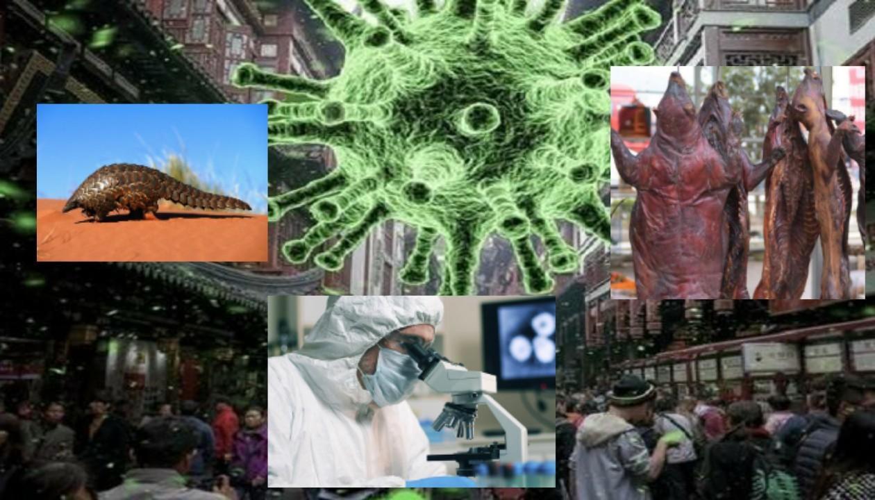 AKTUAL MÖVZUDA SƏMİMİ SÖHBƏT - COVİD-19 virusunun mənşəyi barədə dünya elmi niyə susur?
